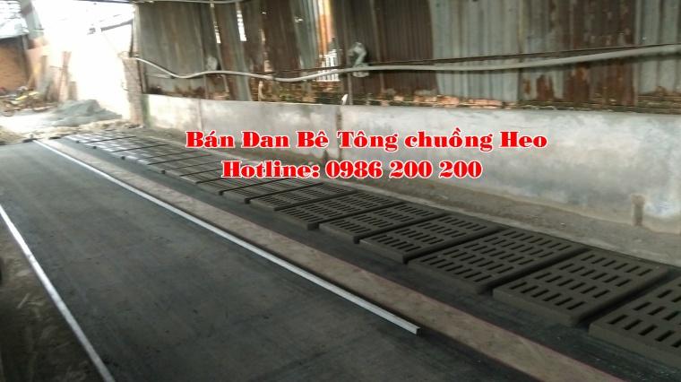 1-dan-be-tong-0986200200-ban-may-rung-va-khuon-do%cc%89-dan-be-tong-ban-dan-be-tong-ban-may-rung-be-tong-ban-khuon-be-tong-2