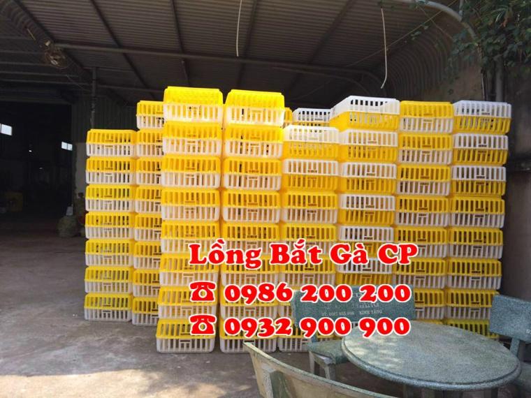 Lồng nhựa đựng gà, lồng nhựa bắt gà, lồng bắt gà thịt, lồng nhựa bắt gà cp, lồng nhựa bắt gà 0986200200, 098 (2)