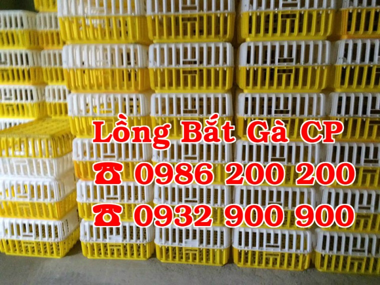 Lồng nhựa đựng gà, lồng nhựa bắt gà, lồng bắt gà thịt, lồng nhựa bắt gà cp, lồng nhựa bắt gà 0986200200, 098 (3)