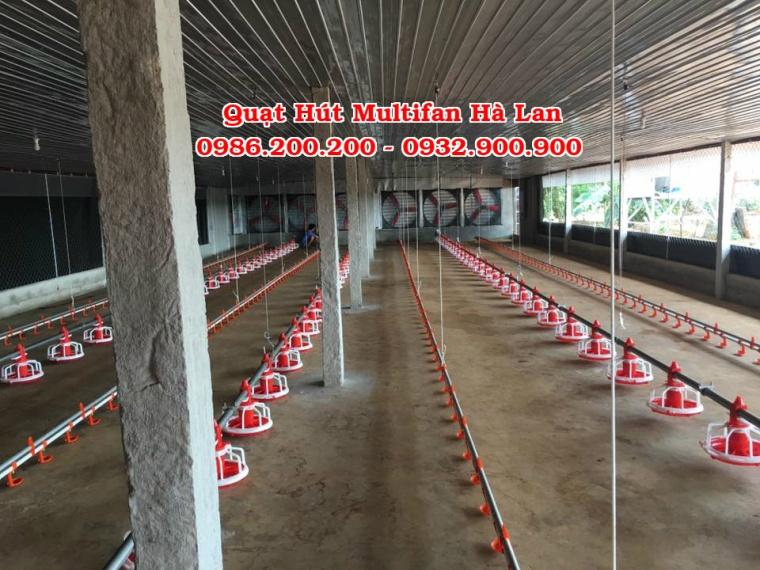 multifan, quạt multifan, bán quạt muitifan, quạt hút công nghiệp, quạt hút multifan, quạt hút multifan hà lan, bán quạt hút multifan (2)