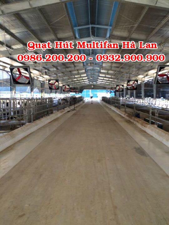 multifan, quạt multifan, bán quạt muitifan, quạt hút công nghiệp, quạt hút multifan, quạt hút multifan hà lan, bán quạt hút multifan (4)