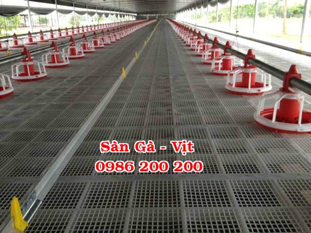 sàn gà, lưới lót gà, sàn nuôi gà, sàn gà thịt, sàn nhựa nuôi gà, 0986200200, tấm lót sàn gà (1)