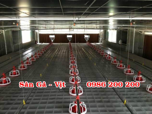 sàn gà, lưới lót gà, sàn nuôi gà, sàn gà thịt, sàn nhựa nuôi gà, 0986200200, tấm lót sàn gà (2)