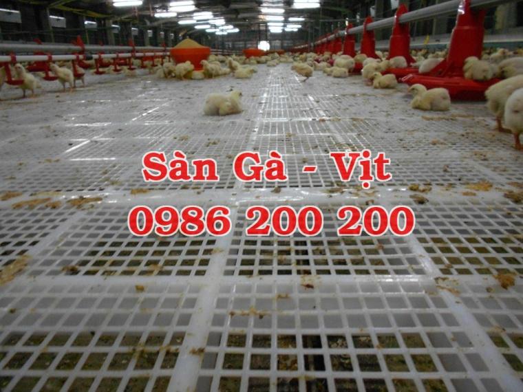 sàn gà, lưới lót gà, sàn nuôi gà, sàn gà thịt, sàn nhựa nuôi gà, 0986200200, tấm lót sàn gà (4)
