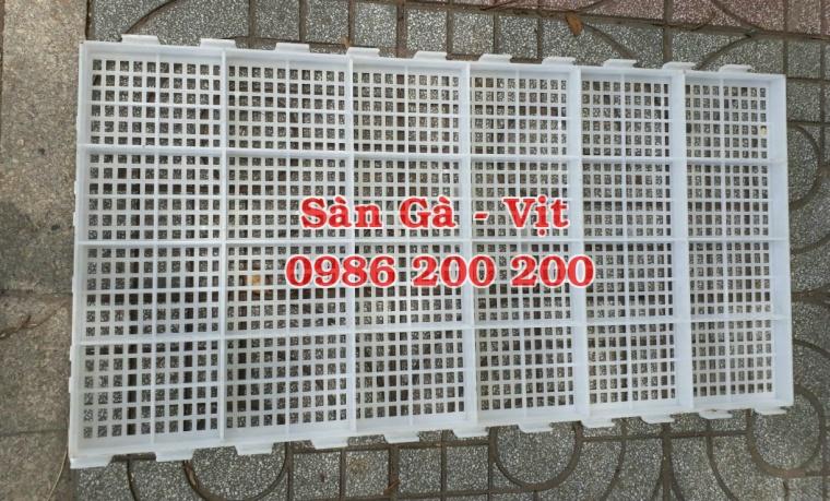 sàn gà, lưới lót gà, sàn nuôi gà, sàn gà thịt, sàn nhựa nuôi gà, 0986200200, tấm lót sàn gà (5)