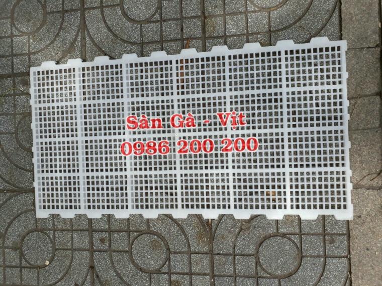 sàn gà, lưới lót gà, sàn nuôi gà, sàn gà thịt, sàn nhựa nuôi gà, 0986200200, tấm lót sàn gà (6)