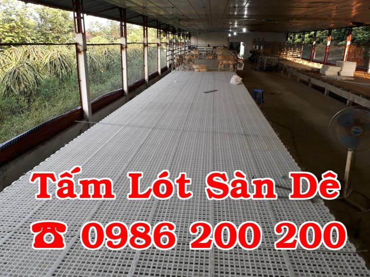 sàn dê, tấm lót sàn dê, bán sàn dê, sàn dê, chuồng trại dê, tấm nhựa lót chuồng dê (4)