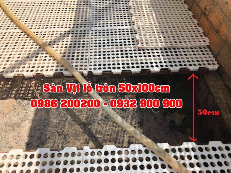 Tấm Nhựa Lót Sàn Vịt , Sàn Gà, Sàn Ngan, Sàn Dê giá rẻ - 11